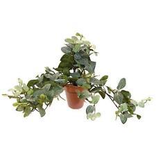 Artificial Trailing Bush 'Potted' Fittonia Ivy 45cm Trails Pot Plant