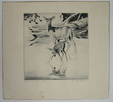 Churchill Ettinger Deer & Fawn Signed Etching Listed Wildlife Sporting Artist