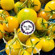 Salattomate SIRLOIN OF ZEBRA grüne Variation Tomatensamen 10 Samen