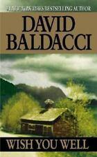 Wish You Well - David Baldacci (Paperback)