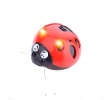LadyBug Catch me Super Fun Insect Funny Interactive Cat Pet Kitten Dog Baby Toys