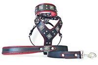 Bestia Eros BIG DOG Set! harness, collar and leash. handmade! top quality!