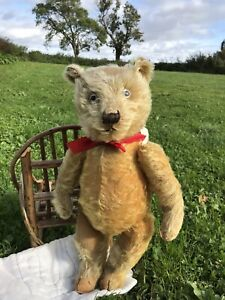 """🤍 Horace 