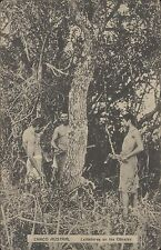 ARGENTINA CAMPO CHACO AUSTRAL LEÑADORES EN LOS OBRAJES KAPELUSZ S 83