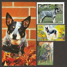 Australian Cattle Dog * Int'l Dog Stamp Art Collection * Unique Gift Idea