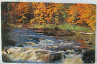 BALSAM LAKE, Wisconsin ~ River Rapids Autum Leaves Changing Colors Postcard