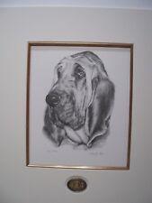 Bloodhound Mounted Sandra Leighton LIMITED EDITION PRINT
