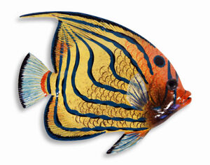 """Painted 15"""" Tropical Fish Wall Mount Decor Sculpture Yellow Blue Strip 76A-4"""
