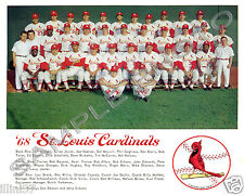 1968 ST. LOUIS CARDINALS NL CHAMPS BASEBALL 8x10 TEAM PHOTO