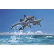 "Four Dolphins Jumping poster in the Ocean 24 x 36"" Print"