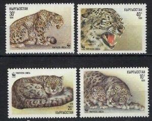 5x Kyrgyzstan  WWF - Wild Cats Timbres Briefmarken MNH** - Wholesale!