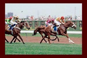 KINGSTON RULE - 1990 Melbourne Cup winner modern Digital Photo Postcard