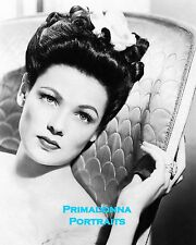 GENE TIERNEY 8X10 Lab Photo REMARKABLE YOUNG Beauty GLAMOUR PORTRAIT Actress