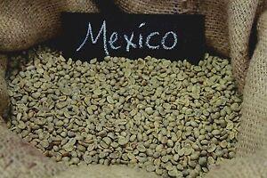 Up To 100 lbs Mexican Chiapas H/G E/P Organic Fresh Crop Green Coffee Beans