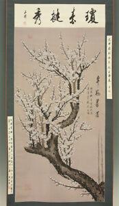 """掛軸1967 CHINESE HANGING SCROLL """"Ume Tree""""  @m907"""