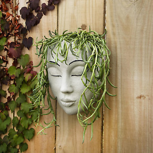 Meadow & Oak Head Planter / Wall Mounted / Outdoor Face Planter with Drainage /
