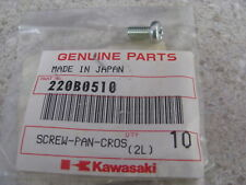 NOS OEM Kawasaki Pan Head Screw 5X10 1968-74 MC1 H1 Bushmaster Mach III 220B0510