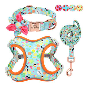 Personalised Girl Dog Collar Soft Mesh Step-in Reflective Dog Harness and Lead
