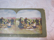 JAPANESE SOLDIERS CUTTING FUEL FOR CAMP STEREOVIEW CARD ANTIQUE    T*