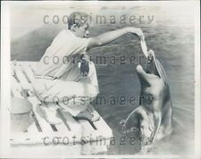 1938 Cute Marineland Porpoise Enjoys Lunch Florida Press Photo