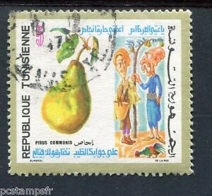 Tunisia 1971, Stamp 704, Flora, Fruit, Pear, Obliterated round Postmark