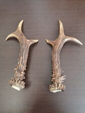 Large Pair of Roe Antlers For Art Decorations Knife Dagger Door Handles # 4084