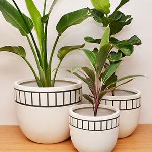 S, M, L - PLANT POT - Lightweight - Hand Painted Planter Tracks Design