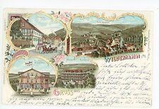 Gruss aus WILDEMANN Goslar AK Clausthal—Zellerfeld Antique Multiview 1898