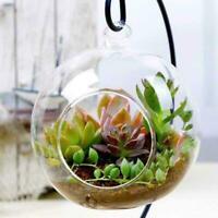 Hängende Glasblumen Pflanzenvase Ständer Halter Terrarium Container-Wedding K2S2