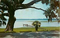 Postcard Historic Beaufort, SC