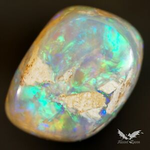 2.75 ct Boulder Opal Wood Fossil Blue Australian Solid Polished Stone #8.066