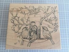 House Mouse Stampa Rosa Rubber Stamp 264 FEEDER FRIENDS Mice Tree Bird Feeder