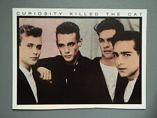 R&L Modern Postcard: Curiosity Killed the Cat, Blue Jeans Magazine Promo