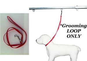 PET Dog Cat NYLON RESTRAINT Noose LOOP w/Clip for Grooming Table Arm Bath*RED