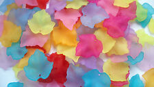 50 Frosted  Acrylic Maple Leaf Leaves Beads Charms Rainbow Mix 25mm