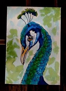 ACEO Original Watercolor Painting, Peacock, by Herbie Hasbrouck Jr