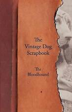 The Vintage Dog Scrapbook - The Bloodhound by Various