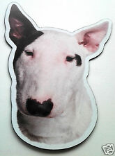 *Bull Terrier*Anywhere / Car Magnet