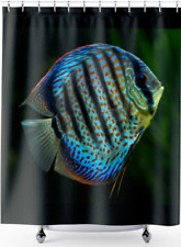 Discus, Tropical Fish, Shower Curtain, Floor Mat, Towel  71 x 74 Inches