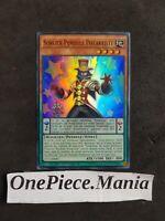 : CT13-FR007 -VF//SUPER RARE Sorcier Pendule Potartiste Sorcerer Yu-Gi-Oh