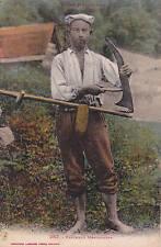 PYRENEES type pyrénéens 382 faucheur montagnard couleur