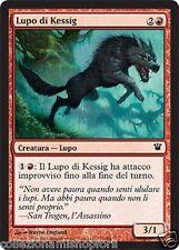 4x Kessig Wolf / Lupo di Kessig - INNISTRAD