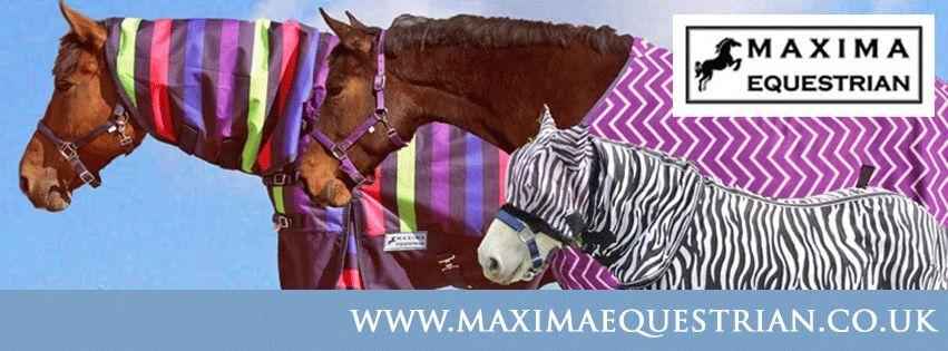 Maxima Equestrian