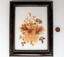"""Imagen De Flores Secas presionado collage Enmarcado Firmado Pauline Furnival Arte 11"""" X 9"""""""
