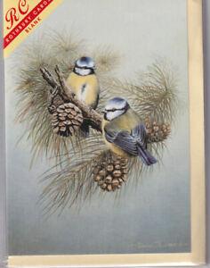 Blue Tit Birds Greetings Card - blank inside, birthday, wildlife, Rothbury