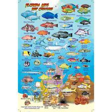 Franko Maps Florida Reef Creature Guide 4 X 6 Inch