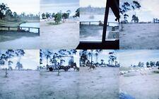8 x Slides African Lion Safari Warragamba 1970s
