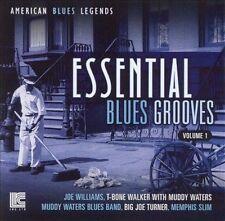 AMERICAN BLUES LEGENDS ESSENTIAL BLUES GROOVES VOLUME 1