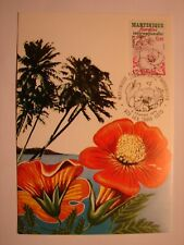 (FR1640) FLOWERS (BLOEMEN) FRANCE 1979 maximum maxi card postcard