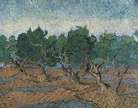 Olive Grove Vincent van Gogh Landscape Painting Canvas Print Reproduction Small